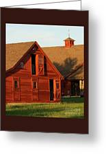 Dual Barns-3811 Greeting Card