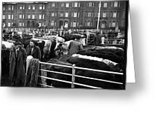 Dublin Cattle Market 1959 Greeting Card