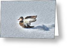 Duck Angel Greeting Card