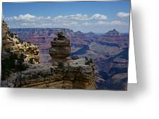 Duck On A Rock Grand Canyon Greeting Card