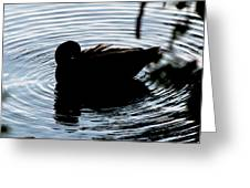Duck Waves Greeting Card