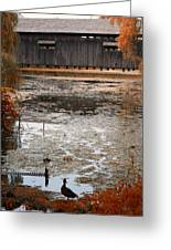 Ducking Under The Bridge Greeting Card
