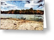 Ducks At The Beach Again Greeting Card