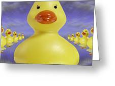 Ducks In A Row 3 Greeting Card