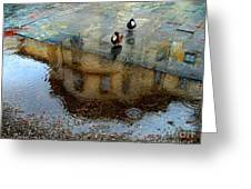 Ducks Of Isola Madre.italy Greeting Card