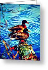 Ducks On A Log Greeting Card