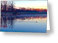 Duck's Sunrise Greeting Card