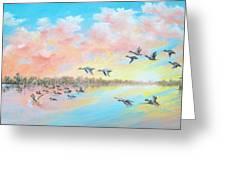 Ducks Two Greeting Card