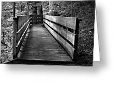 Dukes Creek Falls Walkway Greeting Card