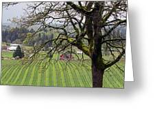 Dundee Hills Wine Country Greeting Card