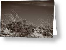 Dune And Blue Sky Greeting Card
