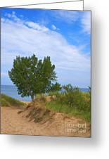 Dune - Indiana Lakeshore Greeting Card