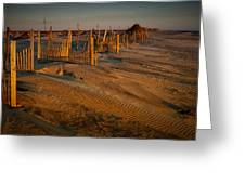 Dune Erosion Fence Outer Banks Nc Img3748 Greeting Card