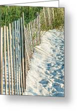 Dune Fence On Beach  Greeting Card