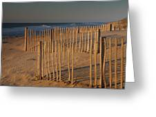 Dune Fences At First Light I Greeting Card