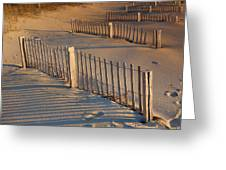 Dune Fences Early Morning Greeting Card