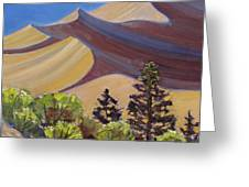 Dune Field Greeting Card by Susan McCullough