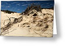 Dune Glue Greeting Card by Adam Jewell