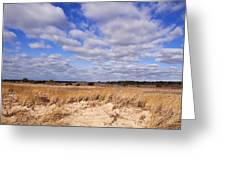 Dune Grass And Clouds Greeting Card