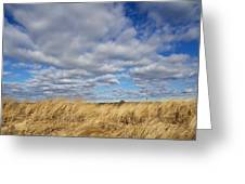 Dune Grass And Sky Greeting Card