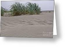 Dune Grass On Beach Dune Landscape Art Prints Greeting Card