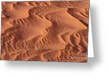 Dune Patterns - 245 Greeting Card