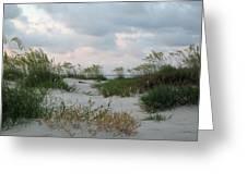 Dune Sea Oats Greeting Card