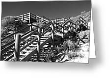 Dune Steps 04 Greeting Card