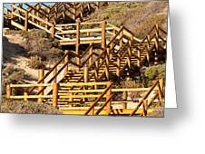 Dune Steps 05 Greeting Card
