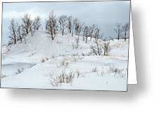Dune Trees And Snow Greeting Card