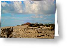 Dunes At Obx Greeting Card