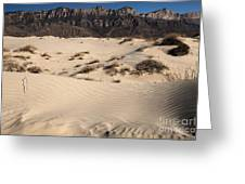 Dunes At The Guadalupes Greeting Card