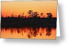 Dusk At Pocosin Lakes Greeting Card