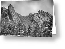 Dusted Flatiron In Black And White  Greeting Card