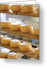 Dutch Cheese Greeting Card