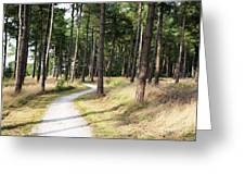 Dutch Country Bicycle Path Greeting Card