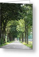 Dutch Landscape - Country Road Greeting Card