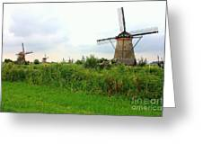 Dutch Landscape With Windmills Greeting Card by Carol Groenen