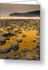 D.wiggett Rocks On Beach, China Beach Greeting Card by First Light
