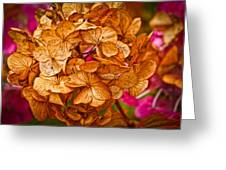 Dying Beauty Greeting Card