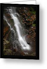 Dynamic Descent Greeting Card
