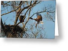 Eagle And The Fish 2 Greeting Card