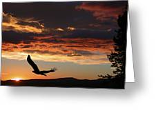 Eagle At Sunset Greeting Card