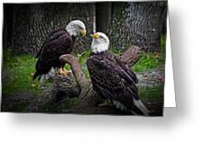 Eagle Couple Greeting Card