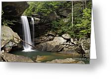 Eagle Falls - D002751 Greeting Card by Daniel Dempster