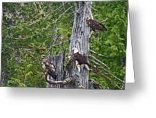 Eagle Gang Greeting Card
