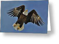 Eagle In Flight 4 Greeting Card