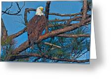Eagle In Oil Greeting Card