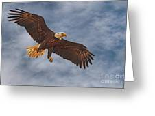 Eagle In The Sky Greeting Card
