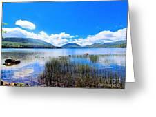 Eagle Lake In Acadia Greeting Card